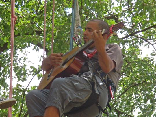 guitariste perché